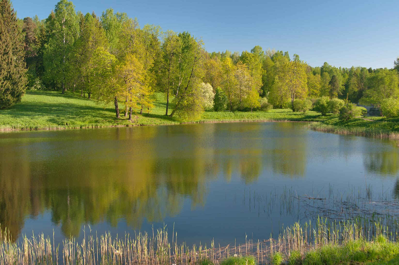Round Pond of Slavyanka River in Pavlovsk Park, south from St.Petersburg. Russia