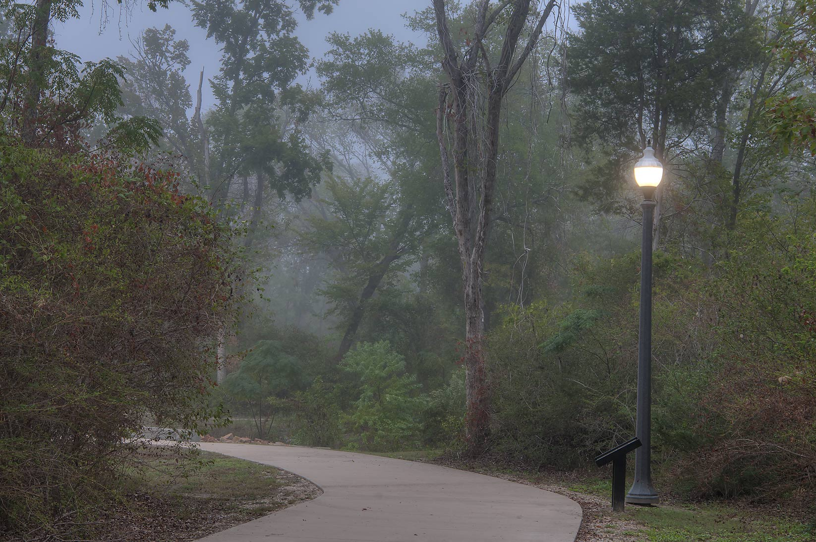 Lamppost of Wolf Pen Creek Park in fog. College Station, Texas