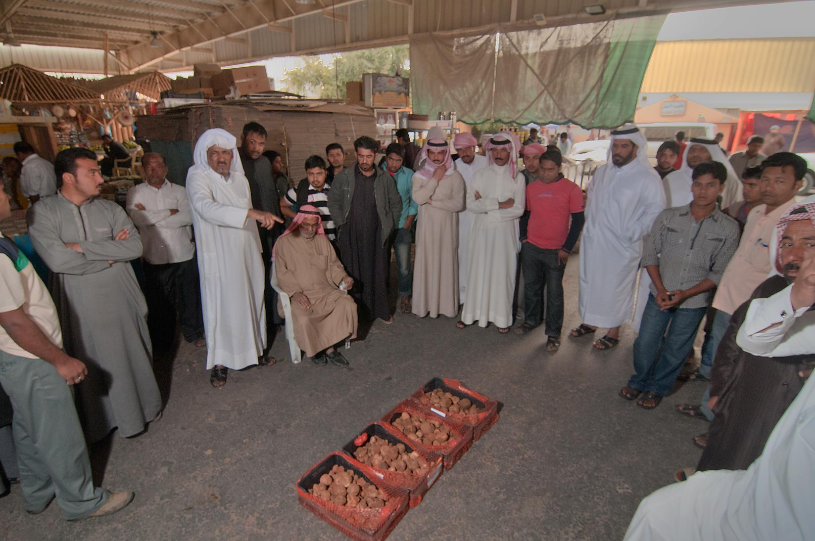 Selling boxes of desert truffles (faqah) at auction in Omani Market. Doha, Qatar