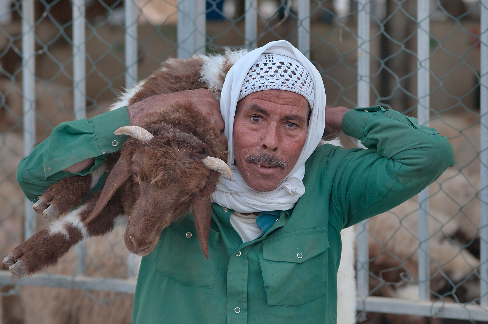 A person carrying a goat in Sheep Market, Wholesale Markets area. Doha, Qatar