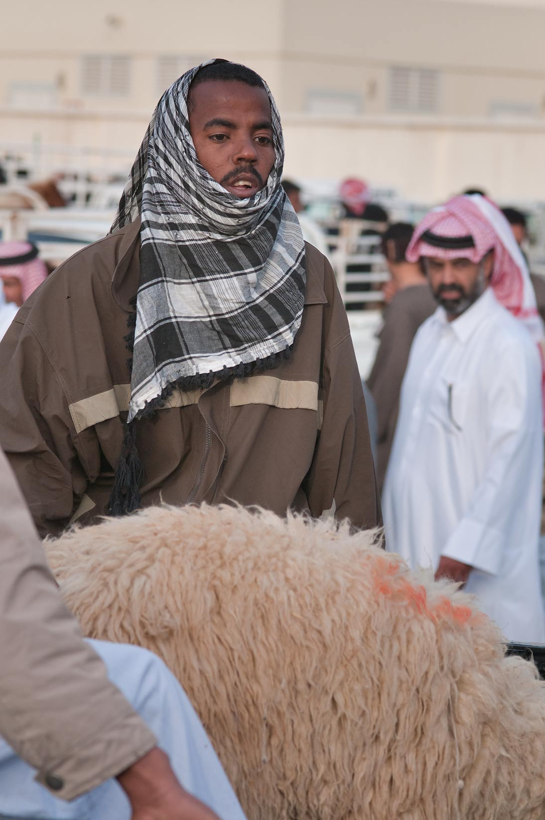 A person with a sheep in Sheep Market, Wholesale Markets area. Doha, Qatar
