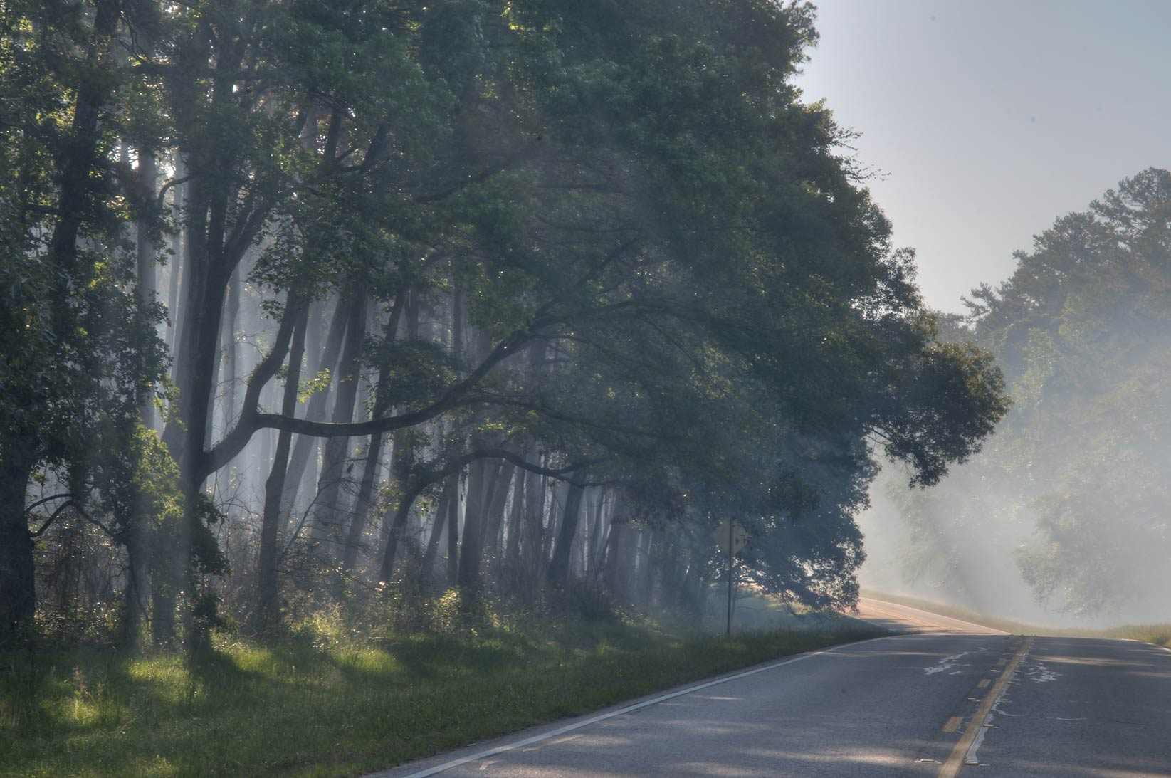 Smoke from controlled burn on Rd. FM 1375 in Sam...National Forest. Huntsville, Texas