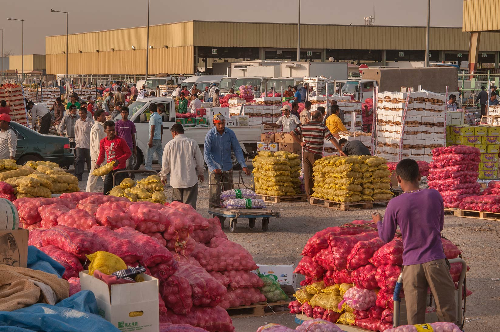 Moving goods in Wholesale Vegetable Market, Abu Hamour area. Doha, Qatar
