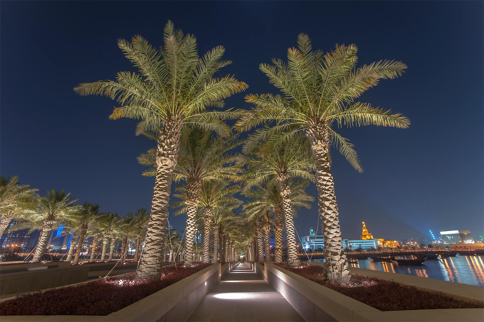 Palm alley at the entrance of Museum of Islamic Art. Doha, Qatar
