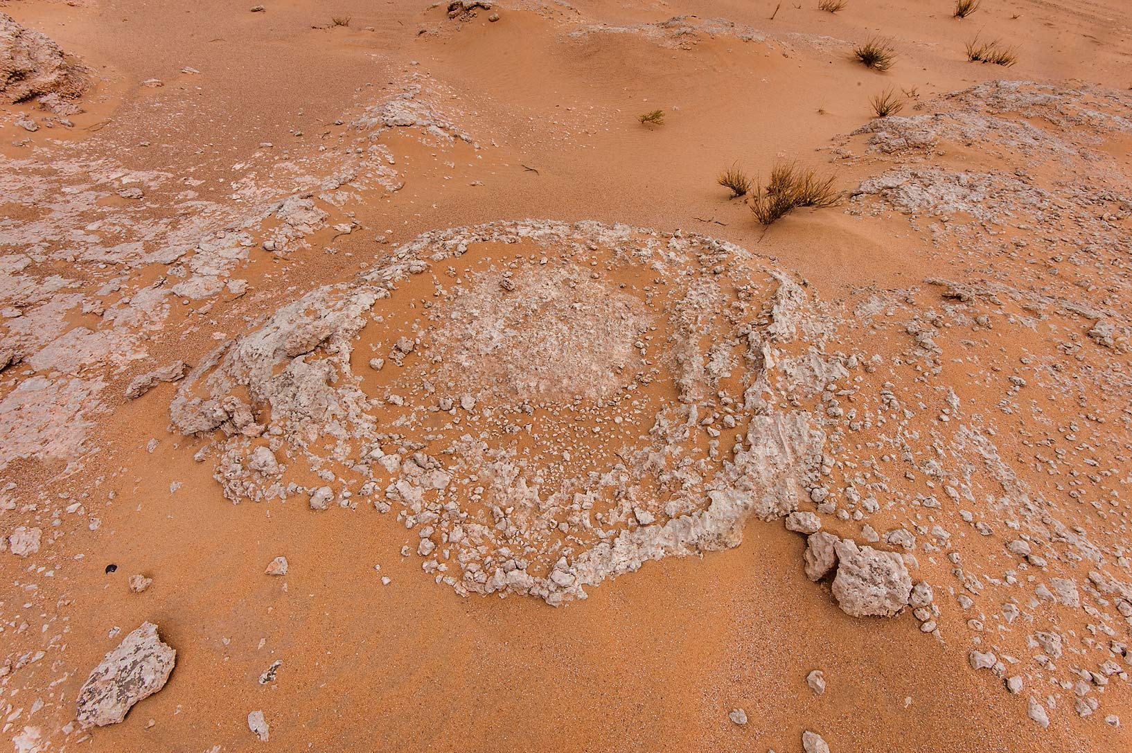 Sandblasted fossilised intertidal stromatolites...near Salwa Rd. in southern Qatar