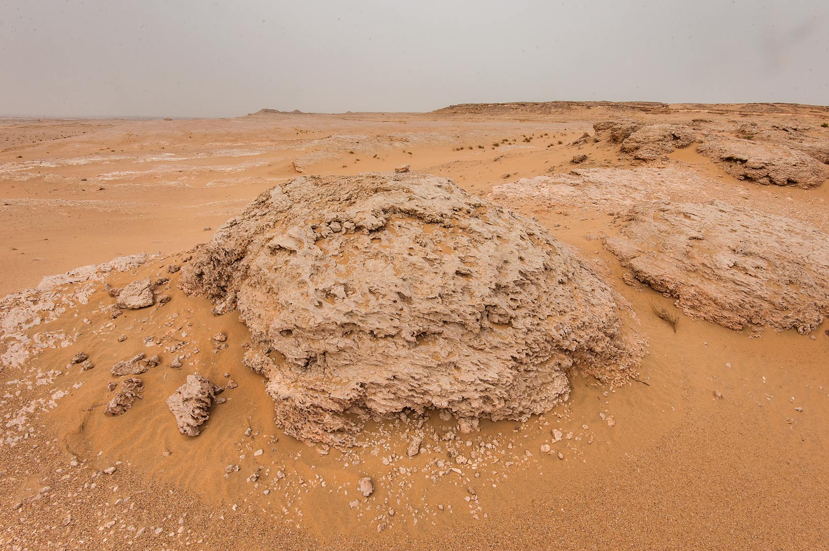 Domes of fossilised intertidal stromatolites...near Salwa Rd. in southern Qatar