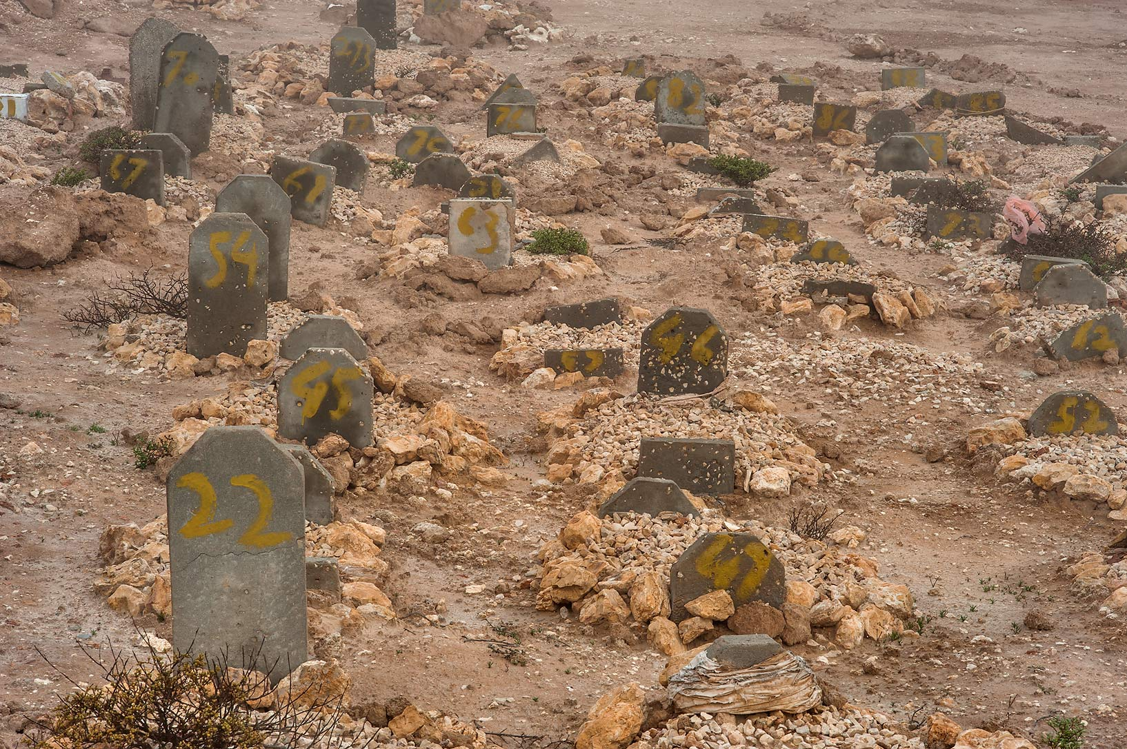 Numbered tombstones of Al Khor Cemetery in mist. North from Al Khor, Qatar