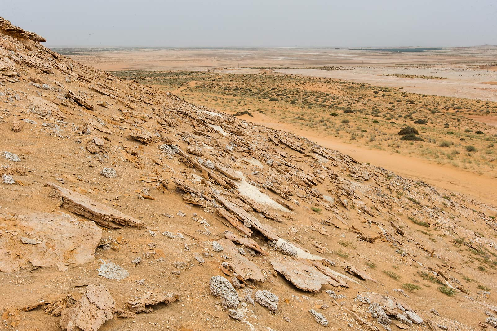 Exfoliation of limestone on a slope of a hill in...Reserve near Abu Samra. Southern Qatar