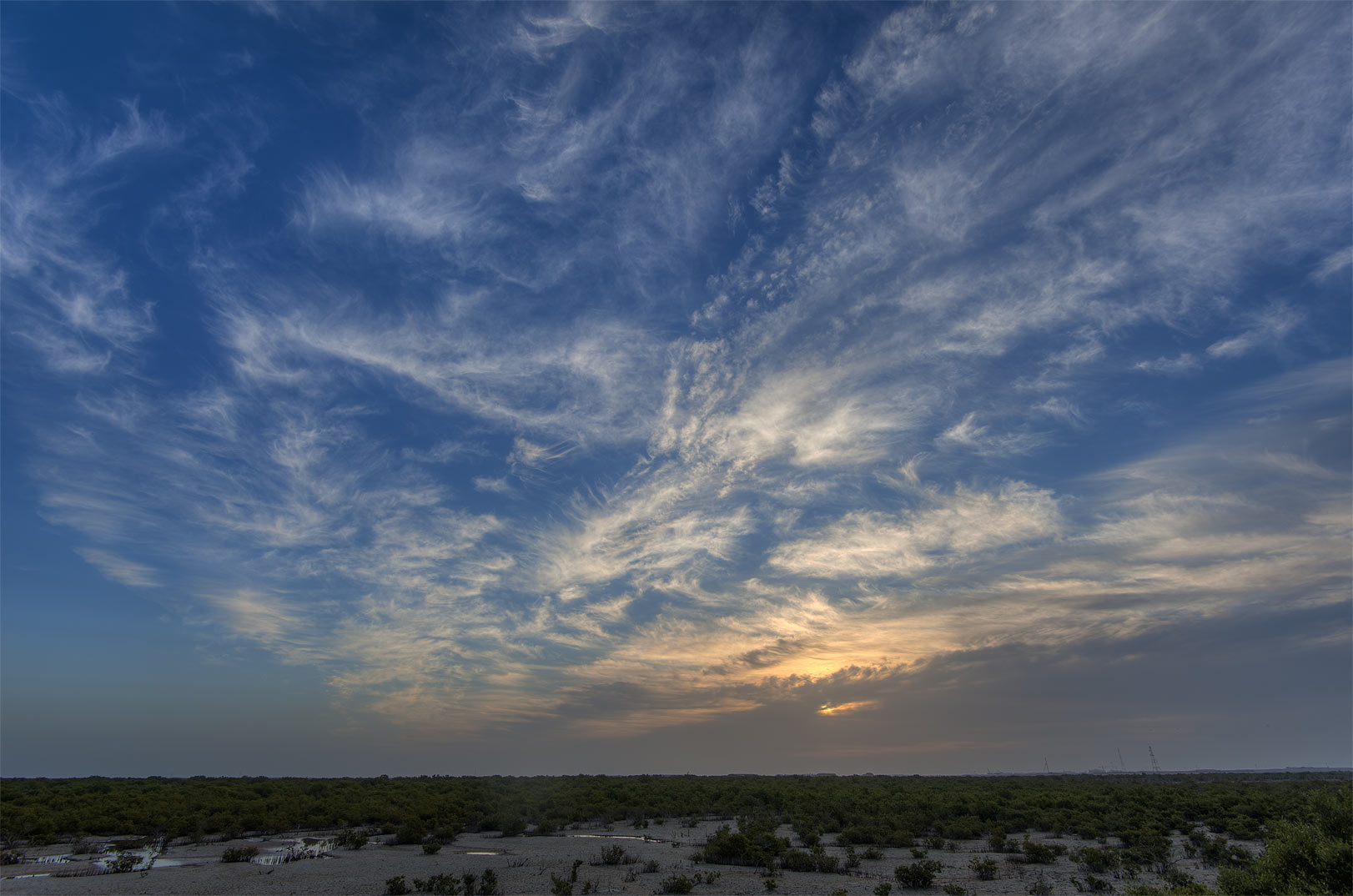Sunrise over mangrove marsh on Purple Island (Jazirat Bin Ghanim). Al Khor, Qatar