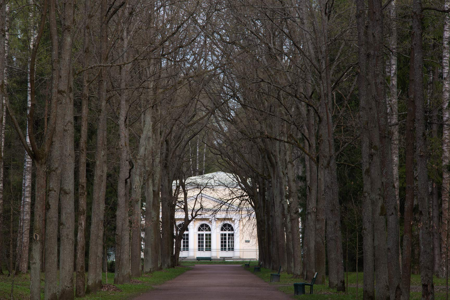Round Hall and Green Woman Alley in Pavlovsk Park...suburb of St.Petersburg, Russia