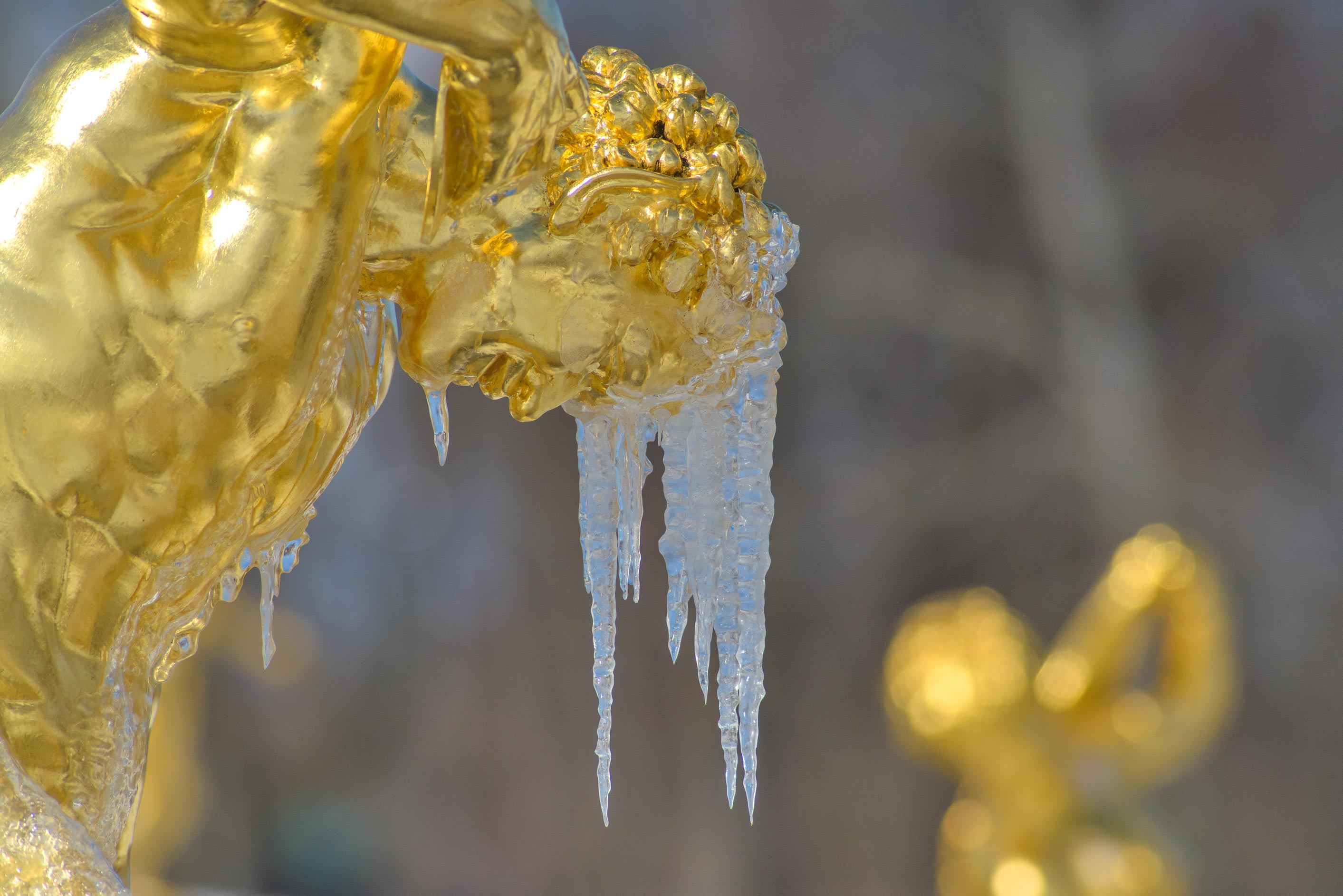 Icicles on a statue of Grand Cascade in Peterhof, suburb of St.Petersburg. Russia