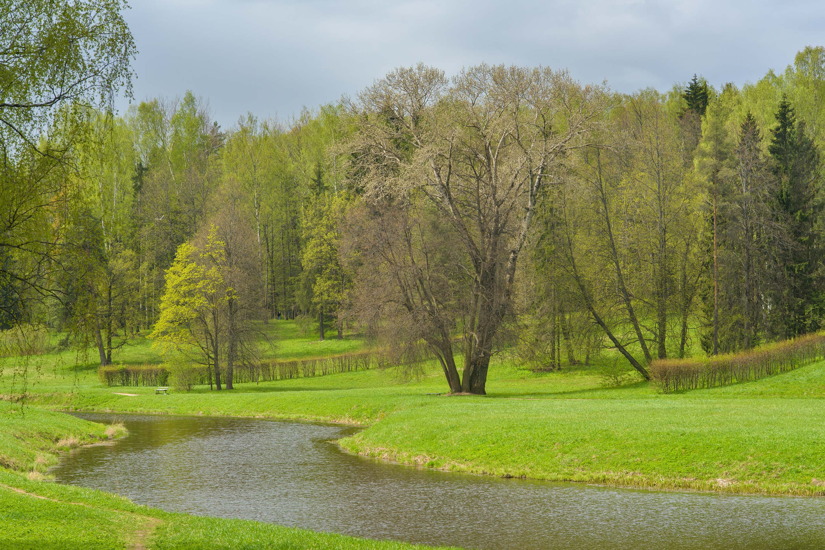Valley of Slavyanka River in Pavlovsk Park. Pavlovsk, suburb of St.Petersburg, Russia